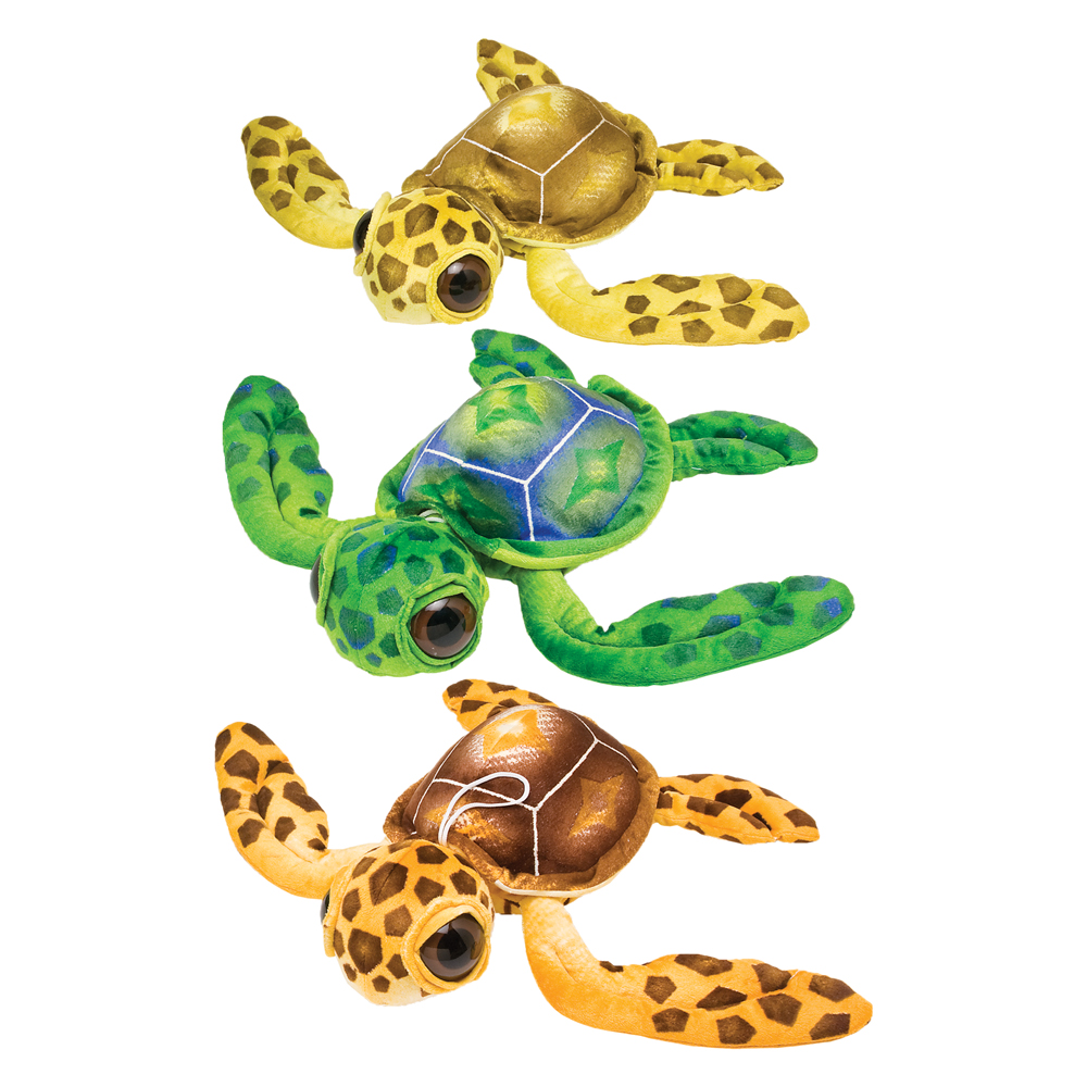 Big-Eye Turtles