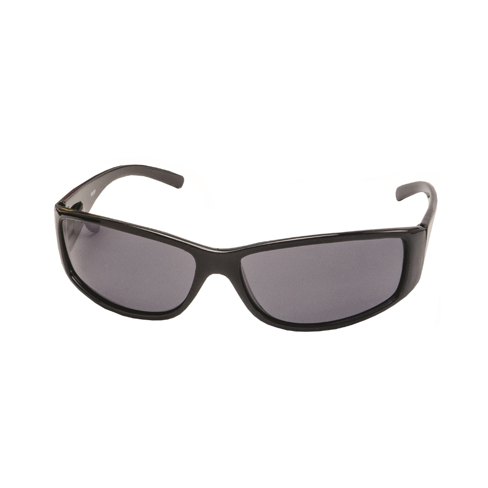 Ray Polarized Sunglasses